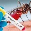 """Logo Diego Garcilaso: """"hay una epidemia de dengue en Sudamérica"""""""