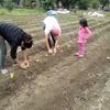 Logo En medio de la cuarentena, un comedor tucumano cultiva sus propias verduras