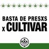 Logo ENTREVISTAMOS A MANOLO MOLTINI DE PSICONAUTAS