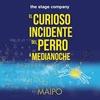 """Logo Función distendida de """"El Curioso Incidente del Perro a Medianoche"""" el próximo 28/09 a las 15 horas"""