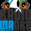 Logo Reflexiones sobre el proyecto del Metrobus en San Telmo @530RadioMadre