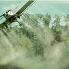 Logo Aprobaron una ordenanza sobre el uso de agroquímicos en la localidad de Selva
