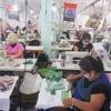 Logo Semillas Me.Co.Po.: Nota con Silvia Cano del polo textil de Avellaneda
