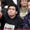 """Logo Miguel Bonasso: """"Diego es la diferencia entre que esto tenga prensa mundial a favor o no la tenga"""""""