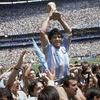Logo Argentina, campeón del mundo, 35 años