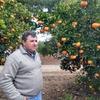 Logo La producción de naranjas - Matías Longoni entrevista a Fernando Borgo, productor de Federación