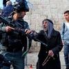 Logo Represión israelí contra palestinos en el Día de Al Quds   Tamara Lalli, analista internacional