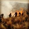 Logo Habla Gustavo Garcia, Bombero afirma que los incendios son intencionales