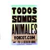 Logo #Entrevista a Malena Bianco de #VOICOT