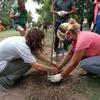 Logo 1000 Plantas Nativas para Lanús - Vicente Piccirillo, coordinador nacional del MAP-CTAA
