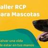 Logo RCP para perros y gatos