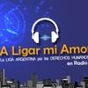 Logo Voces de Indoamérica acompaña el nuevo ciclo solar, un año nuevo.