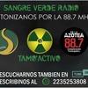 Logo Sangre Verde Radio transmisión Aldosivi vs Huracan