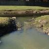 Logo Valeria Ame sobre el río Suquía, la cuenca hídrica más contaminada con pesticidas de la pampa Arg.