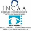 Logo Cine Argentino en peligro. Luis Puenzo habla sobre el despido de Cacetta.