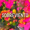Logo SOBREVIENTO presenta su nuevo CD FLORESTA