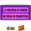 Logo Aumentaron las denuncias por violencia de género en cuarentena
