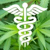 Logo Cannabis; ventajas y prejuicios.