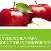 Logo CREAR: Convocatoria a Emprendedores para fiestas regionales