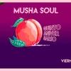 Logo [NOTA] Musha Soul