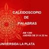 Logo Caleidoscopio de Palabras , programa completo