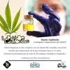 Logo Dario Andriolo en La Patria de las Moscas: 2do Congreso Argentino de Cannabis 2021