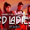 Logo Dialogamos con Luciana Torfano de #LedLadies
