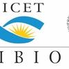 Logo Entrevista al Dr. Esteban Balseiro, investigador de CONICET y director de INIBIOMA.