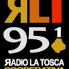 Logo Reportaje a Malena Zabalegui sobre lenguaje inclusivo. Radio La Tosca.