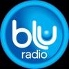 Logo Nov. 29 - Blu 1-2pm