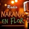 Logo HOY ES VIERNES POR RADIO NEF #HoyEsViernes POR #RadioNef