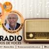 Logo La Radio, 100 Años de Voces