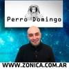 logo PERRO DOMINGO