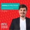 Logo En Radio con vos, con Maxi Legnani, sobre el libro Pasen música, el caso Maldonado y la posverdad
