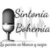 Logo Sintonia Bohemia