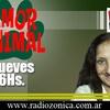 Logo Entrevista a Alan Kaminsky en Amor Animal 23-02