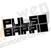 Logo Pulso de Barrio programa nº 2 (Segunda parte)
