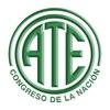 Foto ATE Congreso de la Nación