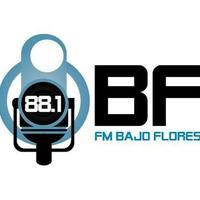 Logo FM Bajo Flores