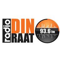 Logo Radio Din-Raat