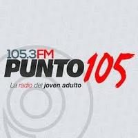 Logo Punto 105