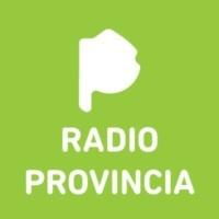 Logo Provincia 97.1 FM