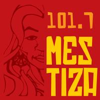 Logo Mestiza