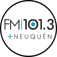 Logo FM +101.3 (Ex Del Plata)