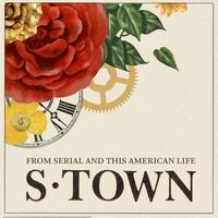 Logo S-Town