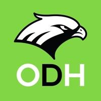 Logo Ojo de Halcon