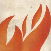 Logo TODOS LOS FUEGOS
