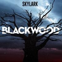 Logo Blackwood