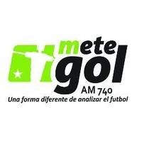 Logo METEGOL