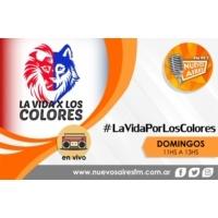 Logo La Vida Por Los Colores